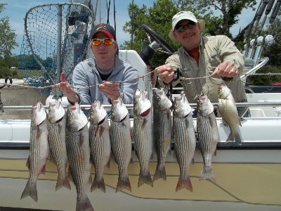Whitney Stripers